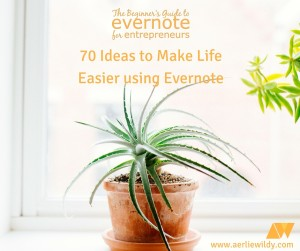 evernote for entrepreneurs