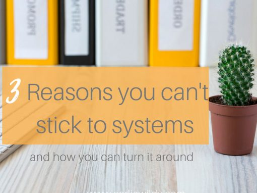 reasons why you cant stick with systems