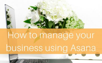 How to Manage your Business using Asana